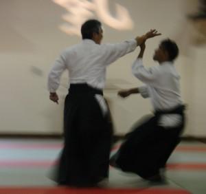 cropped-aikido.jpg