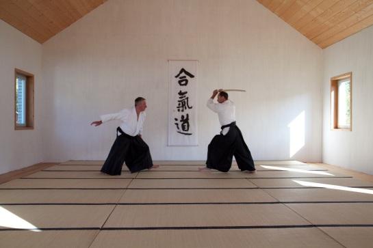 Yokomenuchi-IrmiNage-2.jpg